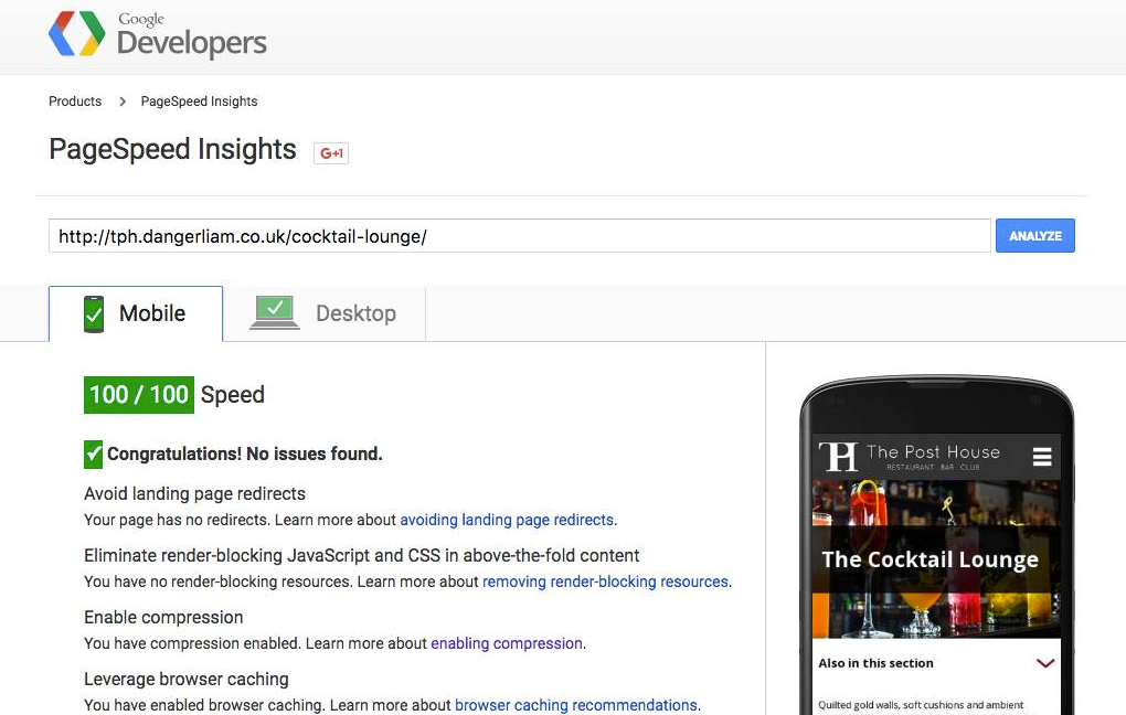 Screenshot of the Google Page insights screen
